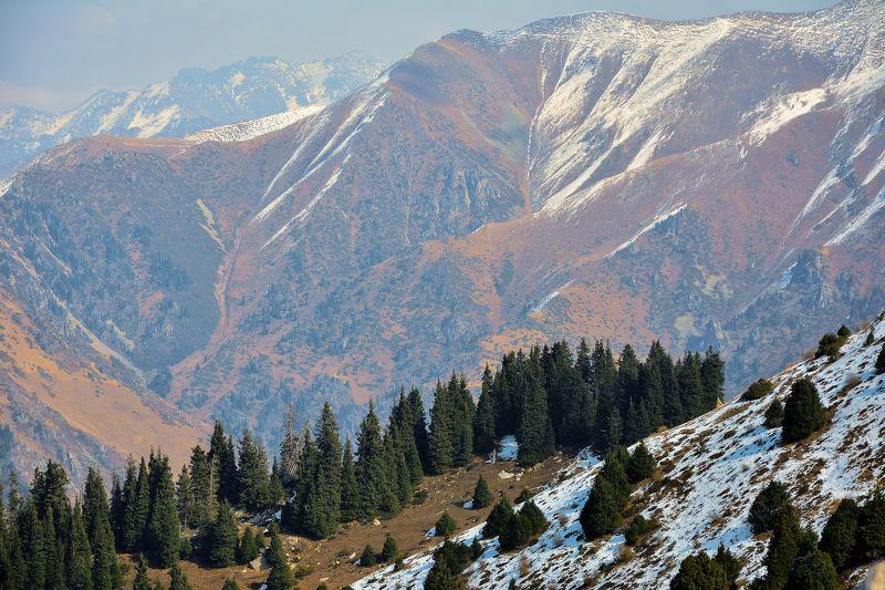 Ферзаулин Руслан, Kazakhstan