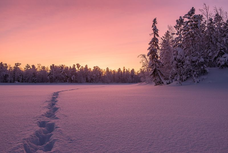 Зима, Мороз, Рассвет, Снег, Утро, ЯНАО Морозное утроphoto preview
