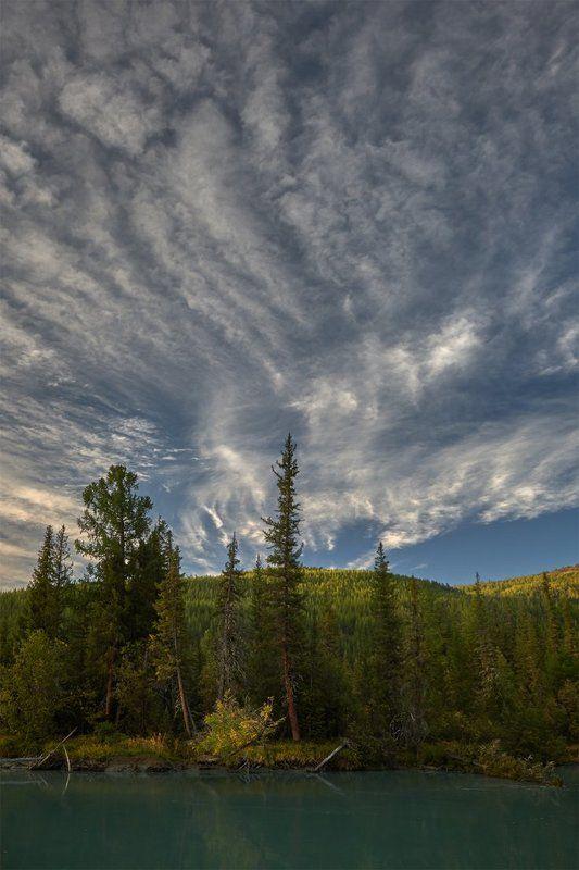 алтай, тайга, плоскогорье укок, коксу, плёс, утро, горнотаежный ландшафт, перисто-кучевые облака Здесь начинается Укокphoto preview