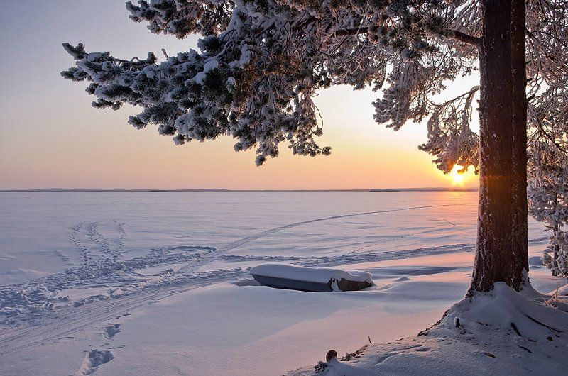 Куйто, Карелия, север, зима, снег, лодка Зимовкаphoto preview