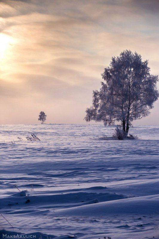 Krasnoyarsk, Russia, Siberia, Snow, Winter, Зима, Красноярск, Сибирь, Снег Во степи...photo preview