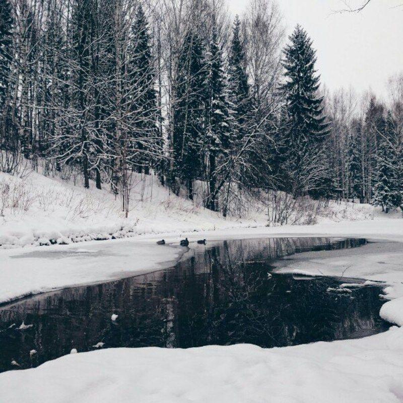 Ксения, Russia