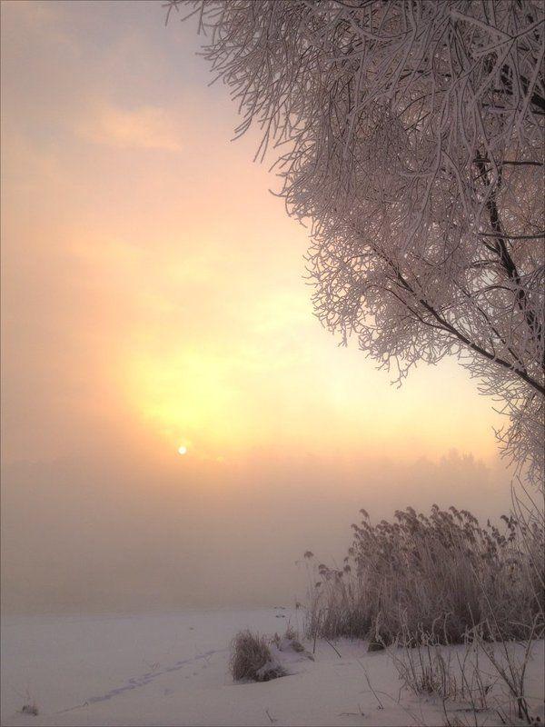 Зима, Мороз, Москва-река, Солнце, Холодно Бодрое утро (-30°)photo preview