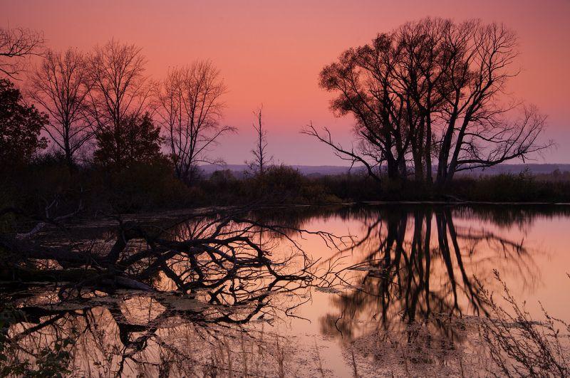 вечер, осень, закат, озеро, отражение, деревья Вечерphoto preview