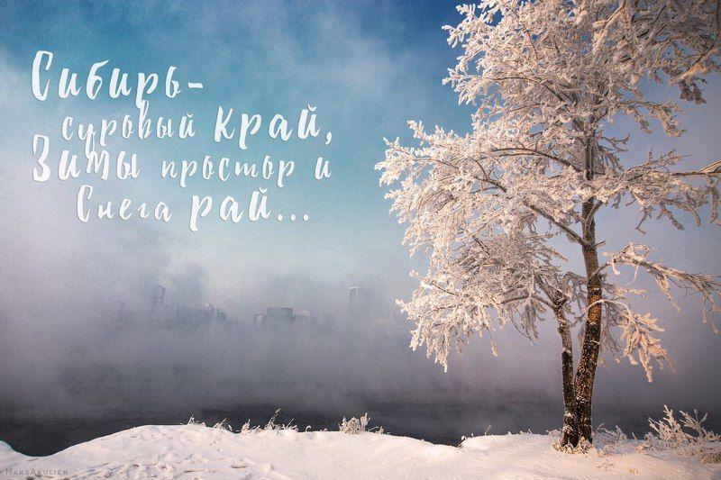 krasnoyarsk, photography, russia, siberia, snow, travel, winter, зима, красноярск, о.отдыха, россия, сибирь, снег Зимние зарисовкиphoto preview