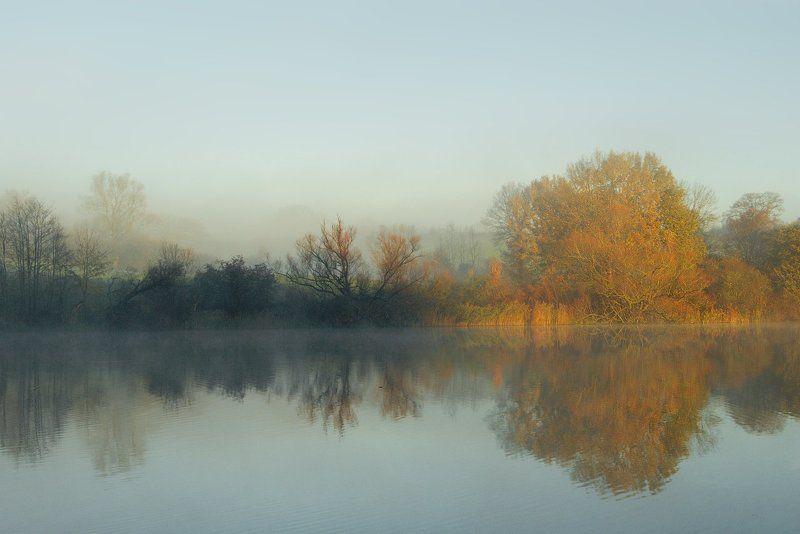 schwentine, fluss, river, sunrise, kiel, schleswig-holstein Morning Lightphoto preview