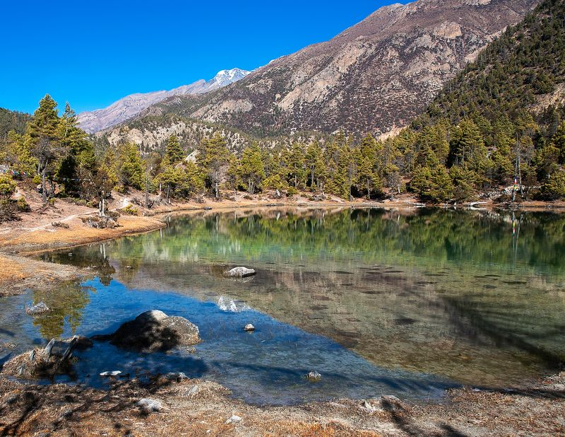 На цветном озереphoto preview