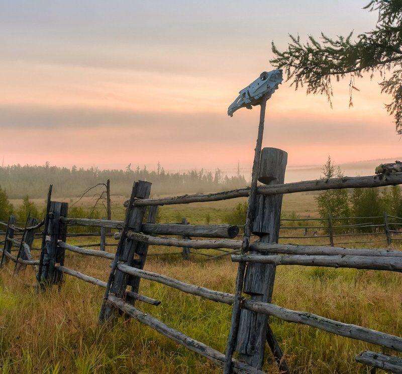 Утро на старой конной фермеphoto preview