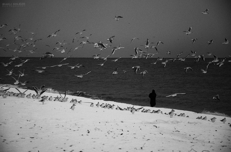 sea; winter; seaside; snow; silluette; human; b&w; landscape; sea-gull;  relaxphoto preview