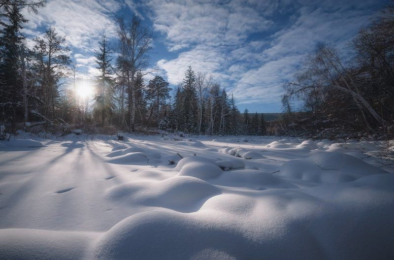 Солнечным январским днём…photo preview