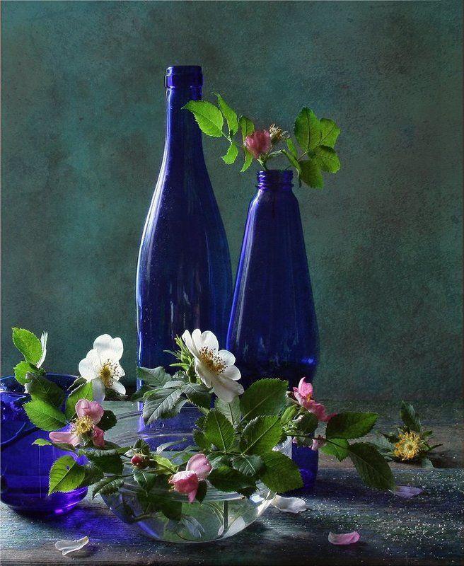 Бутылки, Натюрморт, Синий, Шиповник photo preview