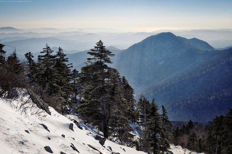 сихотэ-алинь, ливадийский, хребет, горы, даль, воздух, планы, приморье, приморский, дальний восток, дальневосточный Про масштабphoto preview