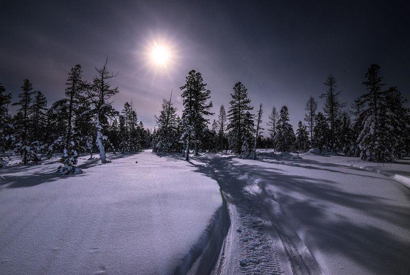 Зима, Луна, Природа, Снег, ЯНАО Под светом луныphoto preview