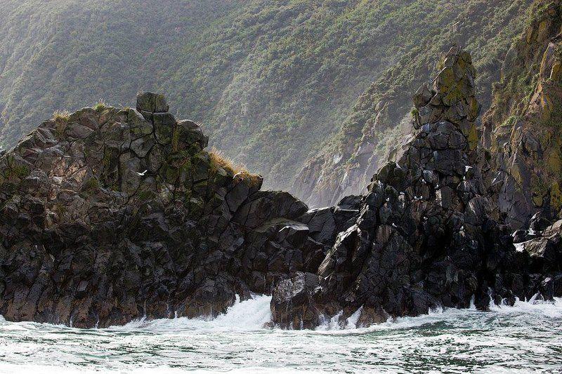 камчатка, тихий океан ***photo preview