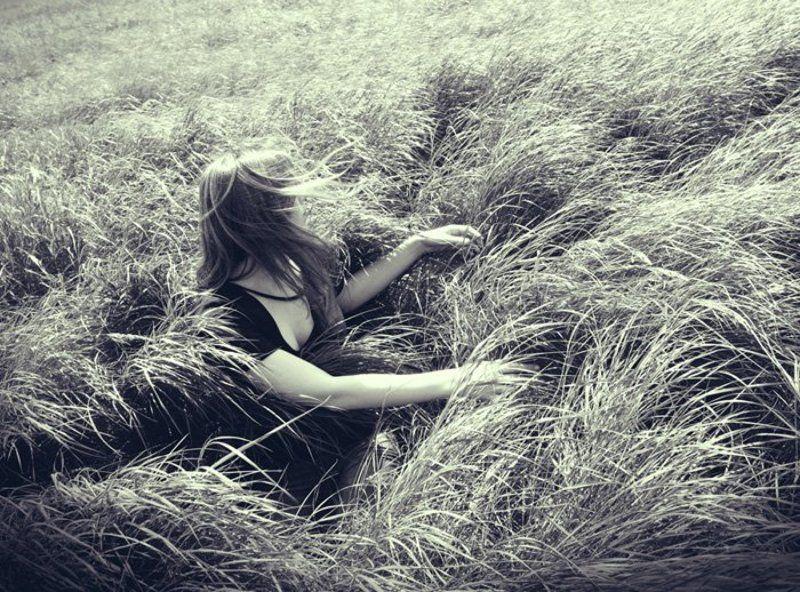 поле, ветер, волны greenwavesphoto preview
