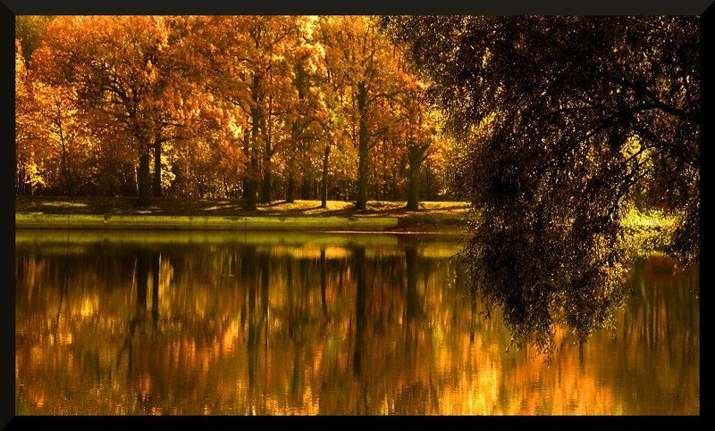 *** Романс про её осень ***photo preview