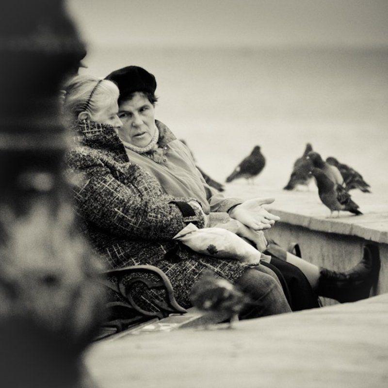 севастополь, крым, диалог, жанр Севастопольский диалогphoto preview