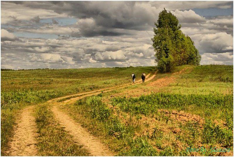 луга, просека, путники Поход за облакамиphoto preview
