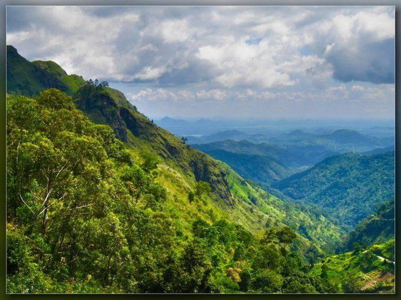 nuwara eliya,горы,нурелия В горах Нурелииphoto preview