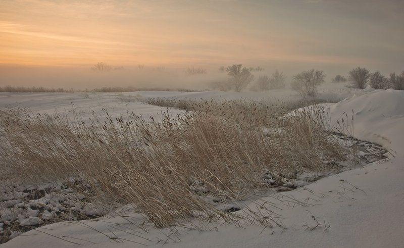 зима, речка, туман Зимнее утроphoto preview