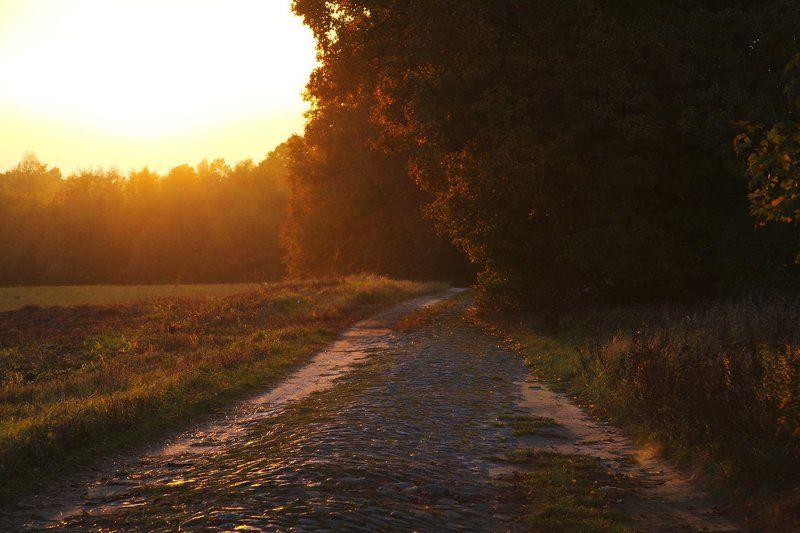 Дороги Балтикиphoto preview