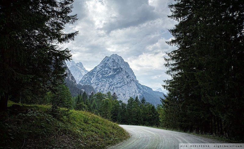 Альпы, Бавария, Германия, Горный пейзаж, Горы, Дорога, Лес .photo preview