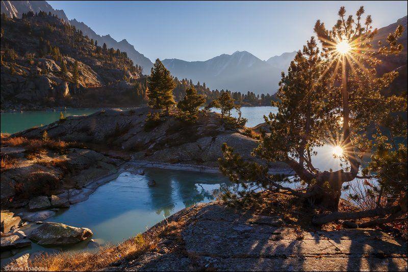 Алтай, Аня графова, Горный алтай, Горы, Дарашколь, Катунский хребет, Осень Дарашколь в утренних лучахphoto preview