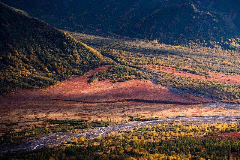 Камчатка, Осень Осень зажигает тайгуphoto preview