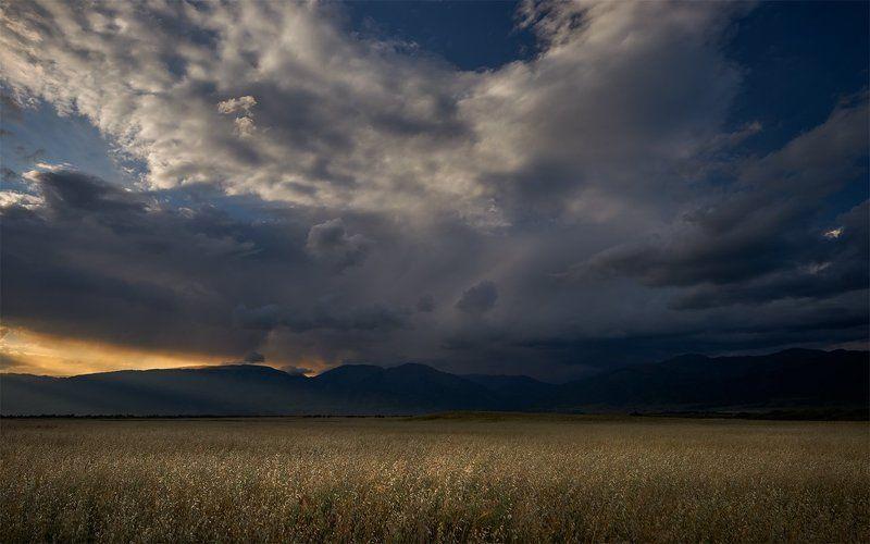 алтай, уймонская степь, теректинский хребет, дождевые облака, вечер Уймонская долинаphoto preview