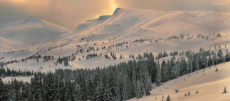 Карпаты, горы, зима, закат, Драгобрат, снег Серебро Драгобратаphoto preview