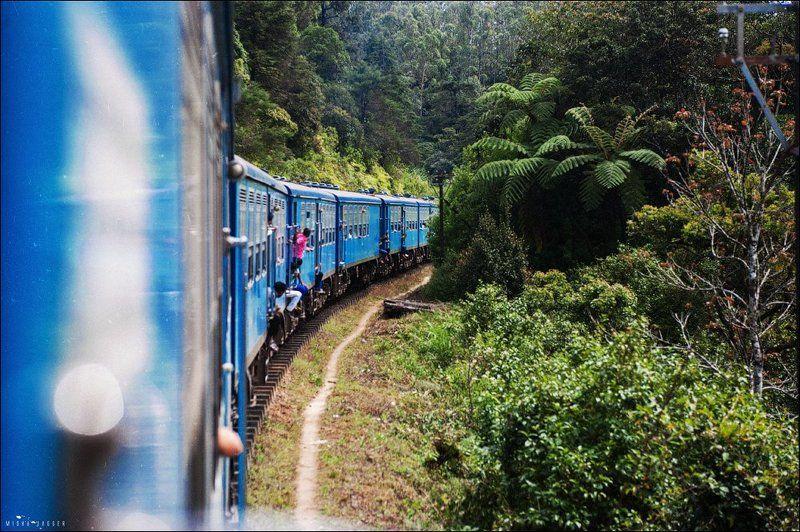 Шри Ланка, поезд Шри Ланка. Поезд.photo preview