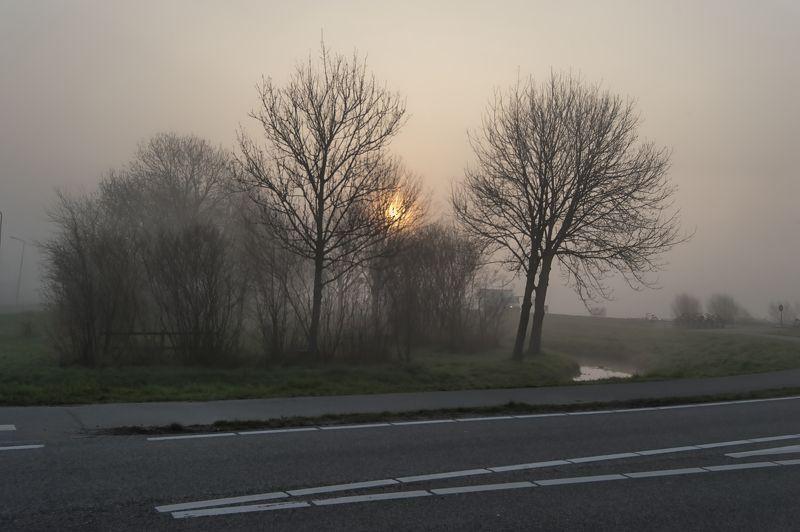 Fog Holand Fogphoto preview