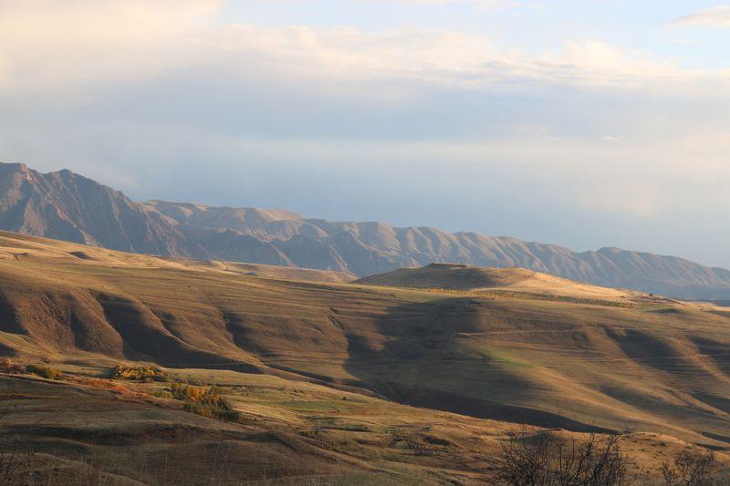 Маргарита, Armenia