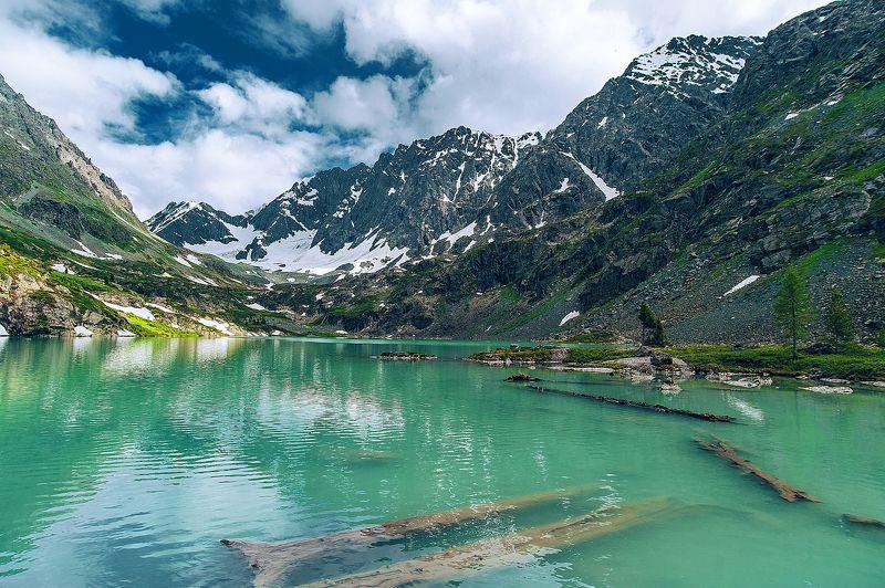 озеро, Куйгук, голубое небо, прозрачная вода, природа, лето, бревна, горы, лес, горный, снег, зелень, бирюзовая вода Озеро photo preview