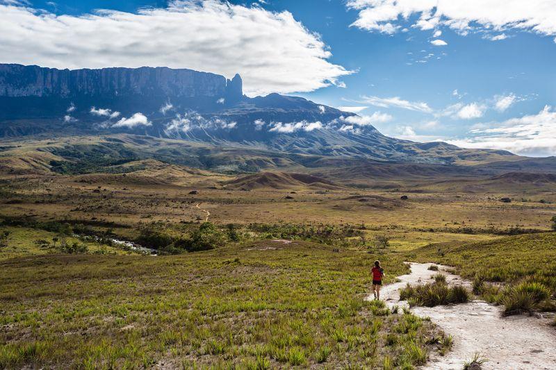 путешествия,природа,венесуэла,горы,тепуи,столовая гора,кукенан,рорайма,треккинг,лето photo preview