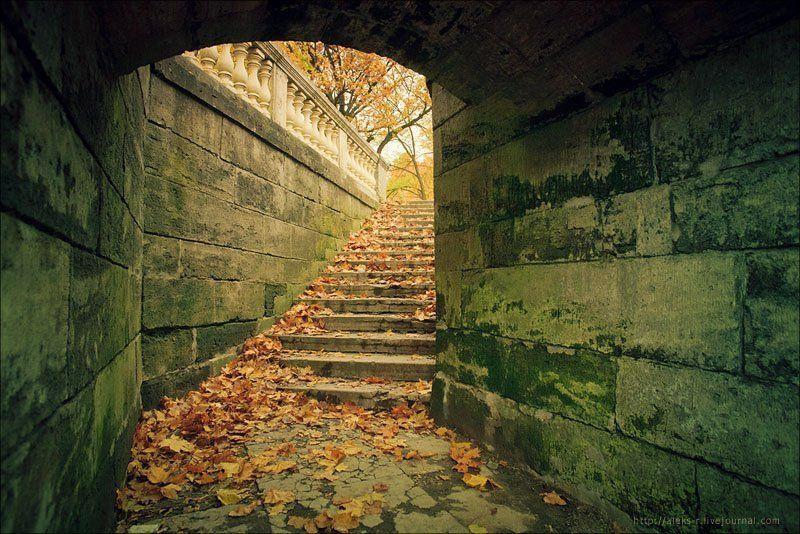 гатчина,осень,октябрь Гатчина.photo preview