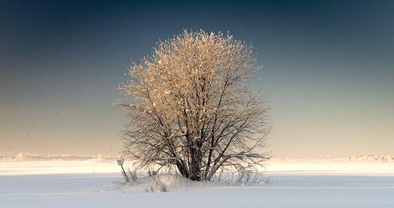 зимний минимализм (2)photo preview