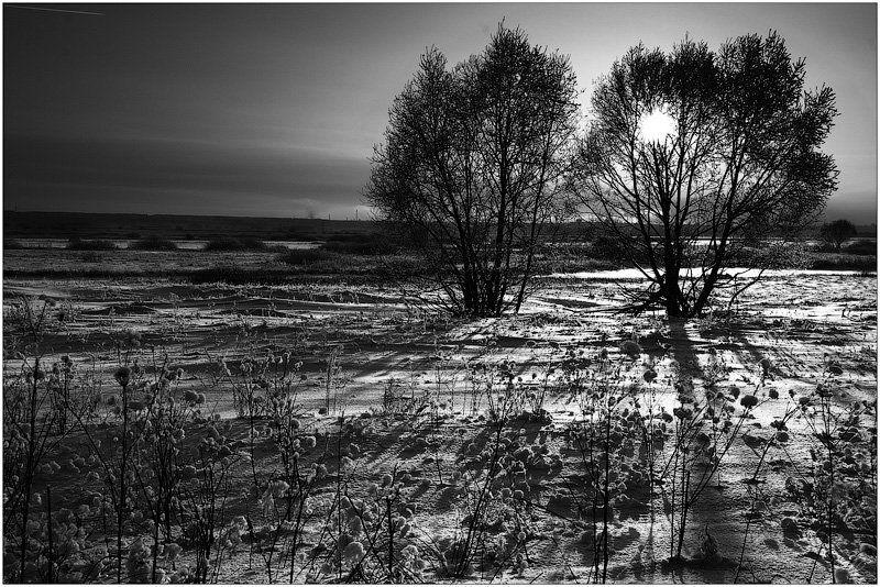 вечер, зима, солнце, деревья **photo preview