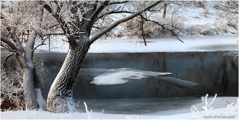 река ,зима,природа,пейзаж,вода,снег,россия,salman,фото,дерево,ива,лебоход, Река Зайphoto preview