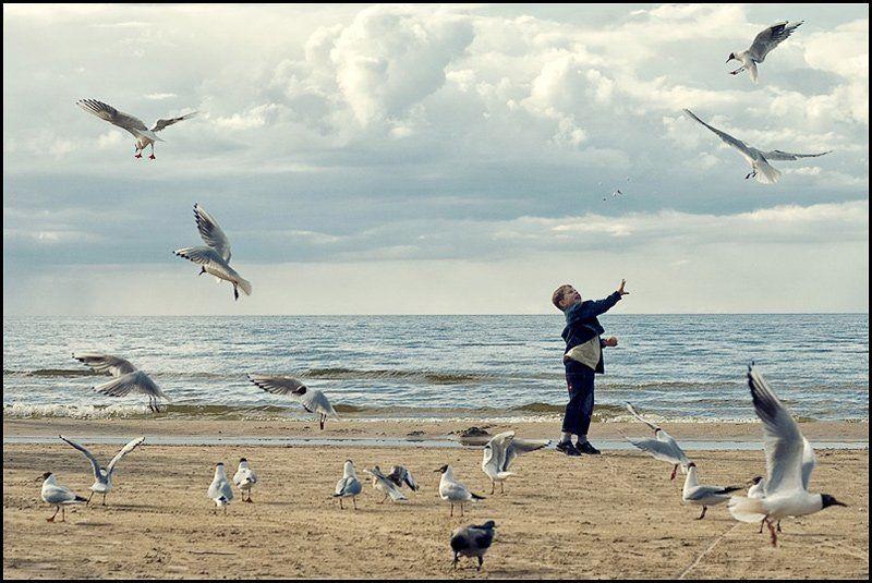 море, чайки лови!photo preview