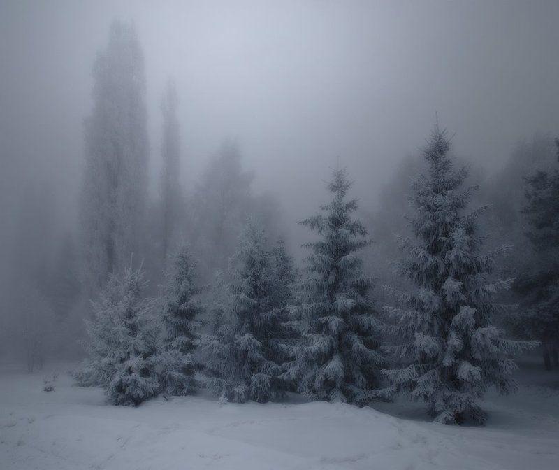 мороз, зима -45photo preview