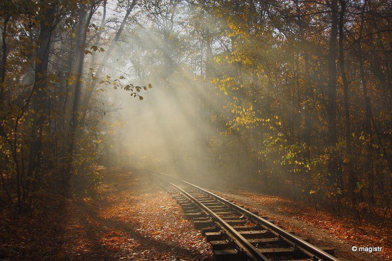 украина, харьков, лесопарк, осень, малая детская железная дорога, листья, туман, дым, свет Листья жгут...photo preview