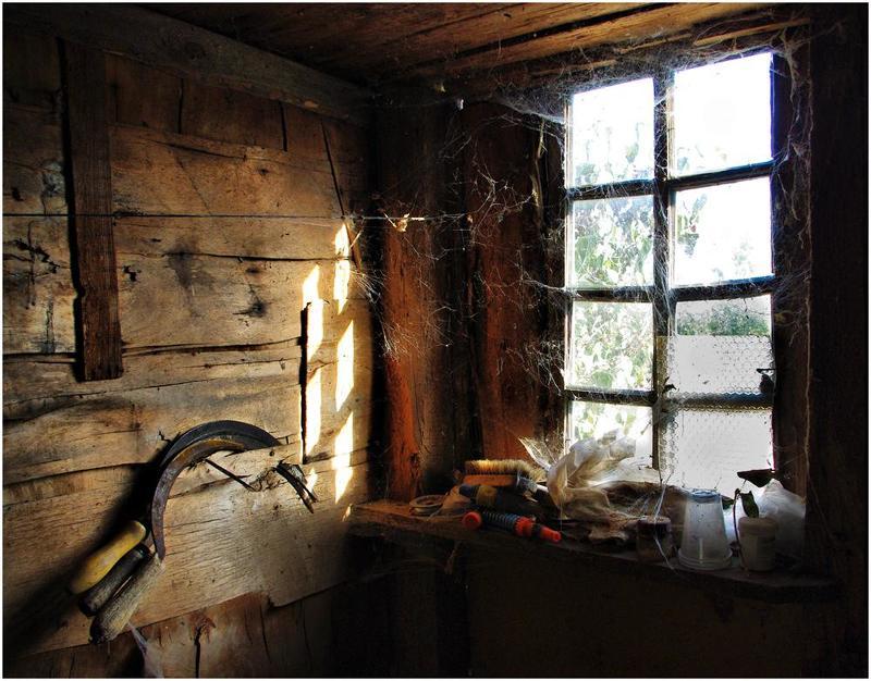 паутина, окно, старые вещи Принцип организованного хаосаphoto preview