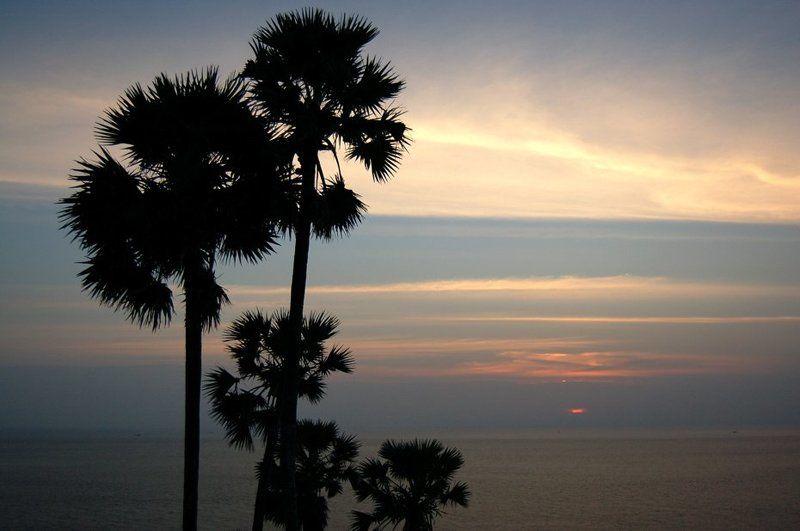 thai, phuket, sea, море, деревья, силуэты андаманское мореphoto preview