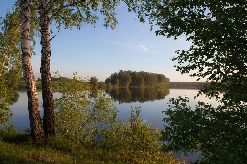 Вода, Лето, Пейзаж, Природа, Тишина Зелёный занавесphoto preview