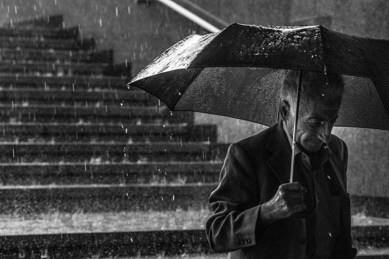 #dendzen Дождьphoto preview