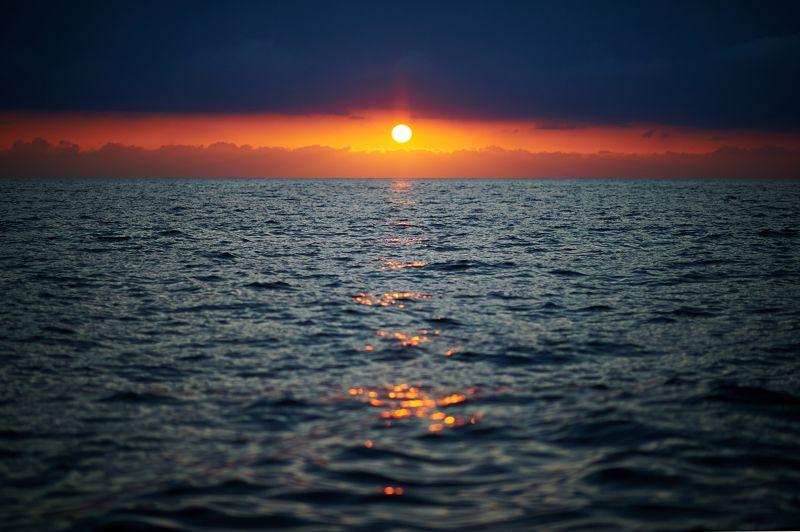 Море солнце photo preview