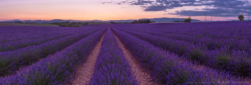 France, Landscape, Lavender, Provence, Sunset, Valansole Пчелиный райphoto preview