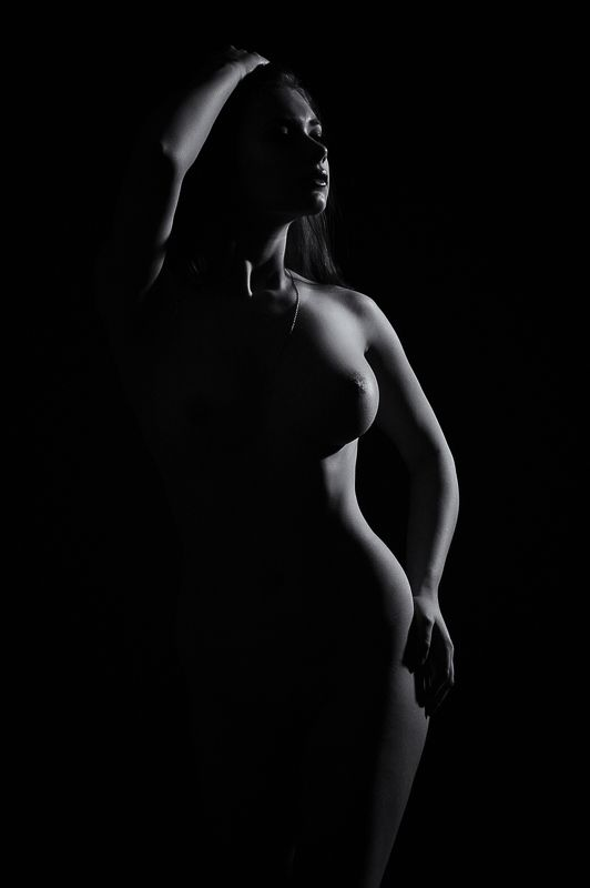 девушка, ню, портрет, ч/б, тело, фигура, свет,  Bodyphoto preview