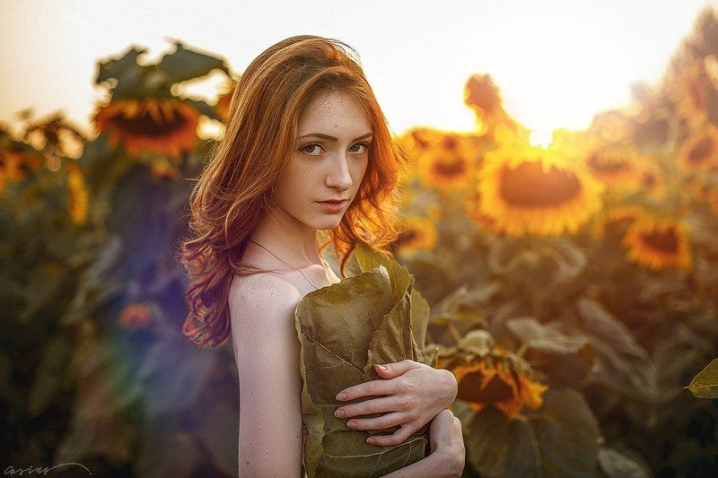 august, summer, sunflowers, beauty, beautiful, girl Augustphoto preview